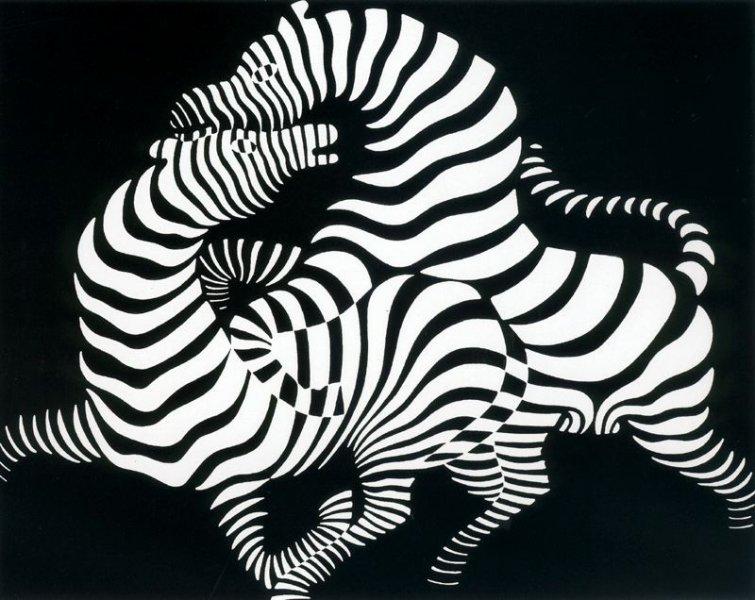Victor Vasarely - Zebras 1950