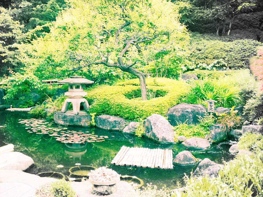 Japanese Garden © Wendy Campbell