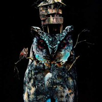 The-Birdhouse-Jacub-Gagnon